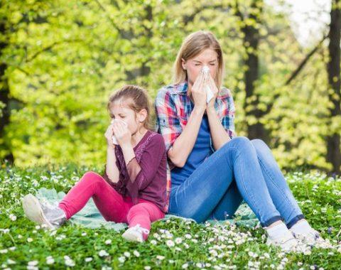 Allergie stagionali: prevenzione e rimedi naturali