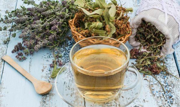 Patologie invernali come prevenirle e curarle con le piante