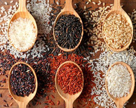 il mondo del riso